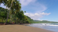 Tropical setting with palm trees and beach in Costa Rica Stock Footage