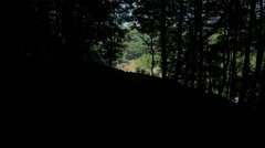 Out of the Dark Woods Overlooking River Stock Footage