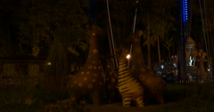 The city's parks at night. Stock Footage