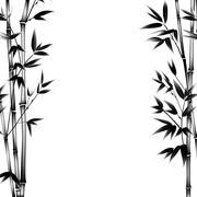Ink paint bamboo Stock Illustration