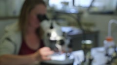 Blurred image of researcher looking trough microscope Stock Footage