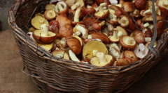 Forest mushrooms on the rough cloth and in bast basket Stock Footage