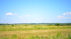 Field on a hot summer day sound Stock Footage