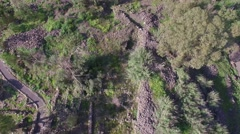 Israel - Bethsaida - Ancient city and hills aerial view (Version 5 of 5) Stock Footage