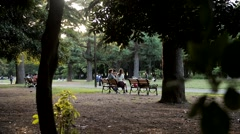 Friends Sitting on Bench in Yoyogi Park Stock Footage
