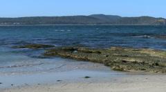 Australia Murramarang beach and exposed rock pan Stock Footage