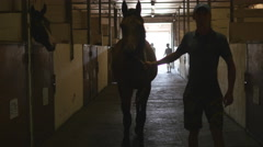 Young jockey is walking with a horse at the stable. Stock Footage