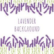 Lavender floral background Stock Illustration