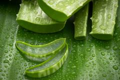 Spa treatment and skin care aloe vera stack wiht aroma oil setup on banana le Stock Photos