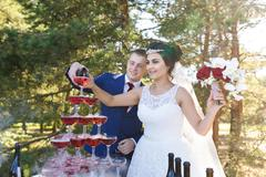 Newlyweds on a wedding banquet Stock Photos