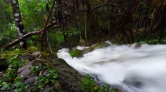 Storm Water Rushing Through The Australian Bush  Stock Footage
