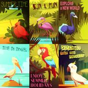 Exotic Birds 6 Posters composition Poster Stock Illustration