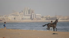 Man training horse on beach,Porbandar,India Stock Footage