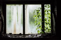 Window with debris in abandoned school in Pripyat Stock Photos