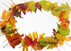 Autumn background. Frame composed of colorful leaves Stock Photos
