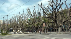 Street with trees in square park, Messina Stock Footage