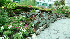 walkway, plant and flowerbed and angel statue in the green house - stock footage