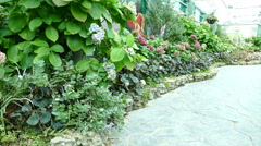 walkway, plant and flowerbed in the green house - stock footage