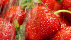 Washing Strawberries With Water. Stock Footage