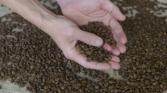 man holding coffee beans - stock footage