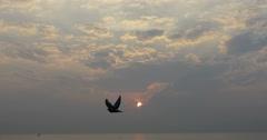 The sun rises over the sea horizon Stock Footage