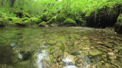 River Susica, mountain Durmitor, Montenegro. Camera just over the surface. Stock Footage