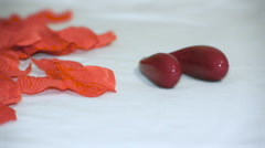 Rose petals and a horseshoe-like vibrator lying on the bed, left to right Stock Footage