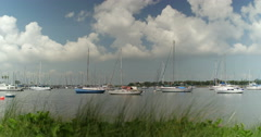 Sailboats Moored in Tampa Bay Wide Shot Stock Footage