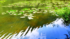 4K Pond Water Gentle Ripple Reflection, Lake Blue Nature Elements Stock Footage