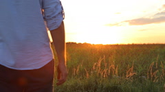 Couple taking hands together on summer meadow field over beautiful sunset. - stock footage