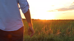 Couple taking hands together on summer meadow field over beautiful sunset. Stock Footage