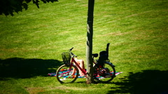 Lady sunbathing on grassland meadow Frankfurt am Main Germany Europe Stock Footage