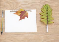 Kraft notepad with ink pen and colorful leaves. Clean sheet of notebook Stock Photos