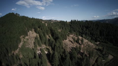 Aerial View: Tracking Backwards From Forestry Mountain with Orchard Below Stock Footage