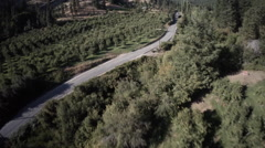 Aerial View: Country Roads and Rural Farming/Pear Apple Orchard Stock Footage