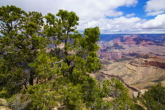 5K MoCo Tracking Time Lapse of Panoramic View at Grand Canyon National Park  Stock Footage