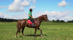Young woman rider riding a horse on the field Stock Footage
