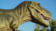 Tyrannosaurus in Novi Sad Dino Park Stock Footage