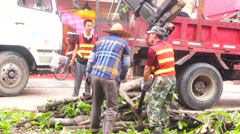 Typhoon toppled trees in the street, the workers in handling Stock Footage