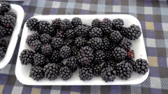 Plate of blackberry for sale Stock Footage