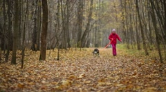 Girl walking with a dog in the forest, the dog pulls the girl Stock Footage