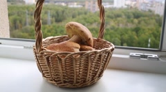 People is taking away wicker basket with mushrooms from window sill. Stock Footage