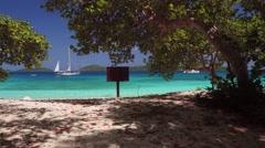 View of hammock on honeymoon beach with audio, St John Stock Footage