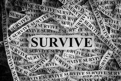 Survive. Torn pieces of paper with the word Survive Stock Photos