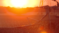 Industrial irrigation of a salad field with a sunset Stock Footage