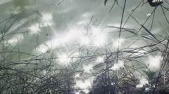 Lake sun glares detail long Stock Footage