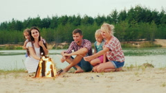 Large group, three adults and two children relax by the fire. Roast marshmallows Stock Footage