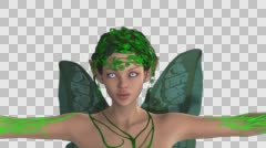 Fairy flaps its wings, close-up ,channel alpha, animation Stock Footage