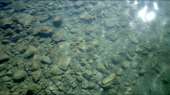 Sun Glistening in Shallow Rock Filled Water - 25FPS PAL Stock Footage
