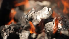 Bright red flames burning branches, close-up Stock Footage